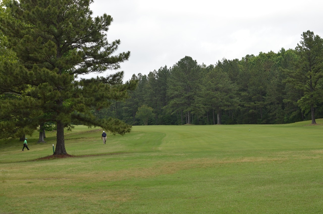 Highland Park Eighteen Golf Course 1